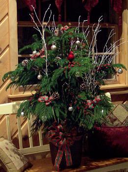 Christmas trees . . .-norfolkdeco.jpg