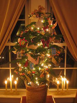 Christmas trees . . .-2114.jpg