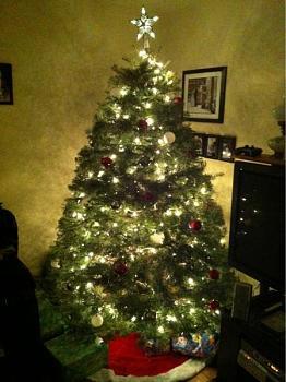christmas 2011-image-62940677.jpg