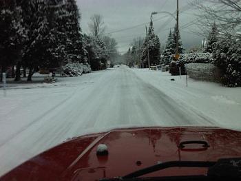 christmas 2011-my-street.jpg