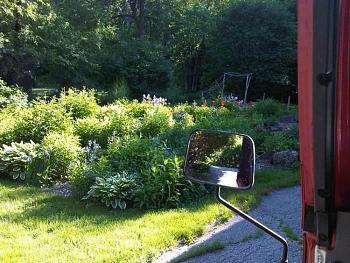 random pictures from your camera-garden.jpg