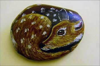 random pictures from your camera-fawn-painted-river-rock.jpg