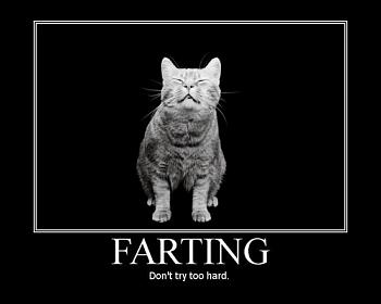 Funny stupid picture thread-farting.jpg