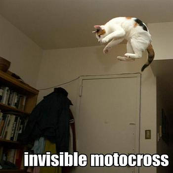 Funny stupid picture thread-invisible-motocross-bike-lolcat.jpg