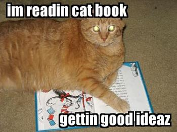 Funny stupid picture thread-lolcat-book.jpg