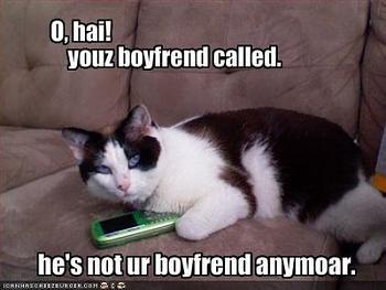 Funny stupid picture thread-lolcat-boyfriend.jpg