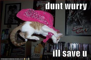 Funny stupid picture thread-lolcat-save-u.jpg
