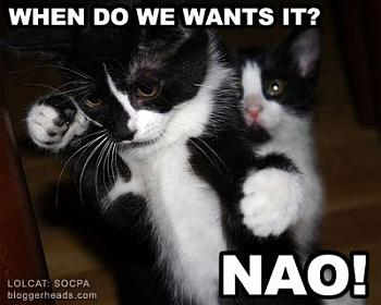 Funny stupid picture thread-lolcat_demonstration.jpg