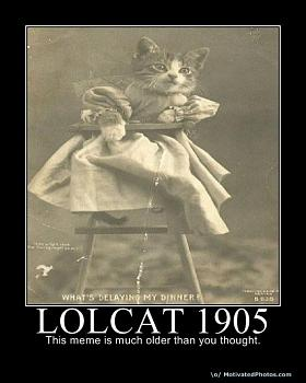 Funny stupid picture thread-lolcat1905.jpg