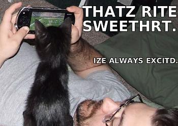 Funny stupid picture thread-lolcat-vgs.jpg