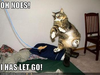 Funny stupid picture thread-lolcats_oh-noes_ihasletgo.jpg