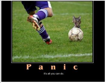Funny stupid picture thread-lolcatsdotcom3panic.jpg
