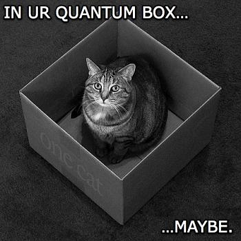 Funny stupid picture thread-schrodinger_s-lolcat.jpg