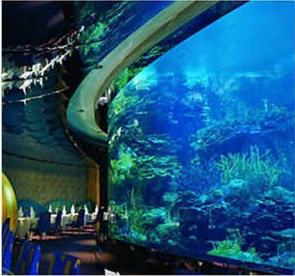 Cincinnati Zoo Aquarium