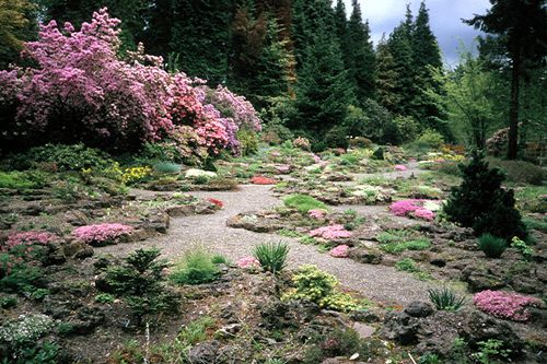 Portland Oregon Berry Botanic Garden photo picture image