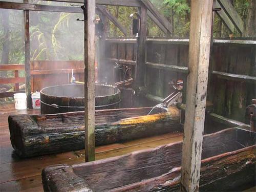 Estacada, Oregon: Bagby Hot Springs photo, picture, image