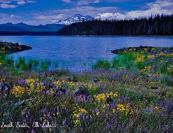 Quartzville gold-south-sister-elk-lake.jpg