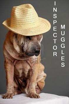 Be prepared-inspector-dog.jpg