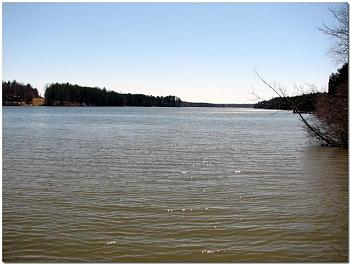 "Does anyone ""FISH""......was my favorite recreation......here's some Virginia Fishing!-042-copy.jpg"