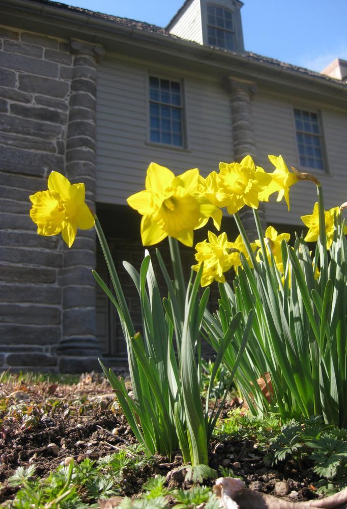 Philadelphia Pennsylvania Historic Bartram S Garden Photo Picture Image