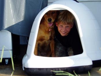 Dogs-boy-dog.jpg