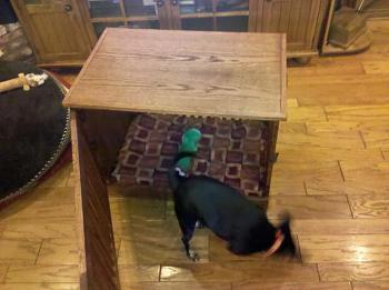 Dog Crate Build-dog-kennel-064.jpg