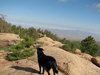 Opie and me went hiking!!-opie-me-088.jpg