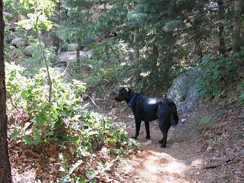 Opie and me went hiking!!-opie-me-138.jpg