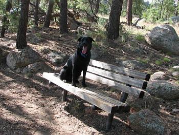 Opie and me went hiking!!-opie-me-087.jpg