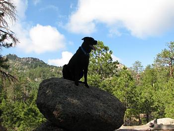 Opie and me went hiking!!-opie-me-111.jpg