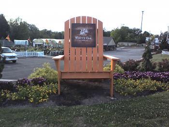giant critters et al-adirondack-chair.jpg