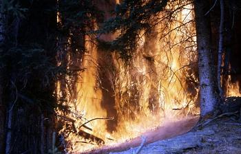 Fire!-1282.jpg