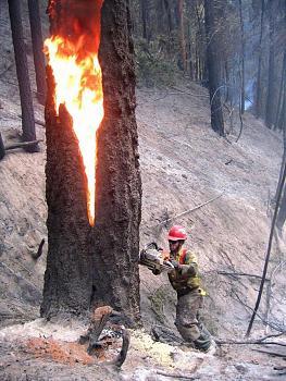 Fire!-2006-ground3rd.jpg