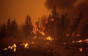 Fire!-12044.jpg