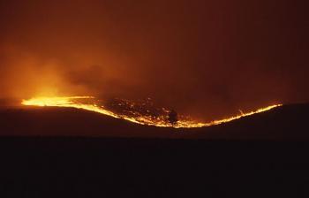 Fire!-12081.jpg