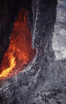 Fire!-12126.jpg
