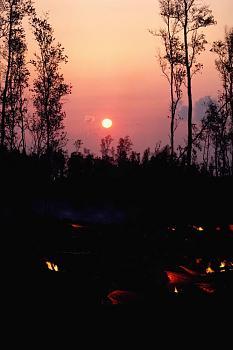 Fire!-fire_0030.jpg