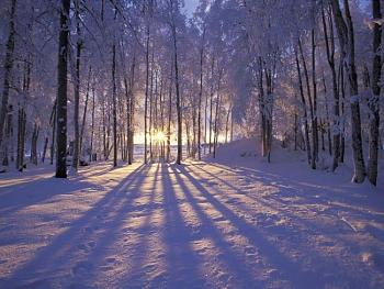 Sunset and sunrise photography-winter-sunset-alaska.jpg