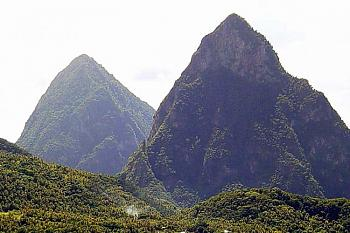 "Everybody loves ""flowers"" and ""trees""......let's share-add yours!-pitons-st.-lucia-wi._edited-1.jpg"
