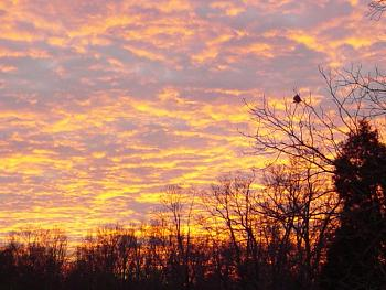 Sunset and sunrise photography-dsc02948.jpg