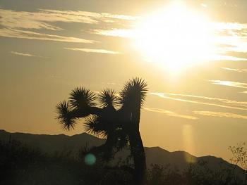 Sunset and sunrise photography-todays-sunset-031.jpg