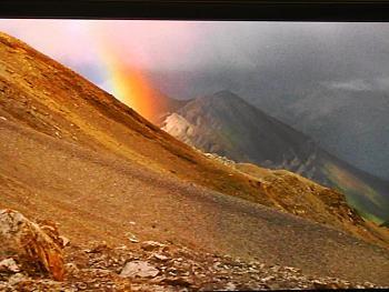 Rainbow Photography-img_5284.jpg