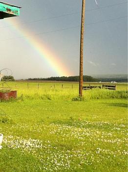Rainbow Photography-image-2625417967.jpg