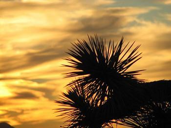 Sunset and sunrise photography-sunset-051.jpg