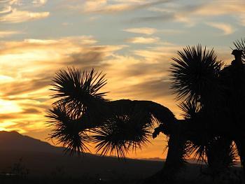Sunset and sunrise photography-sunset-059.jpg