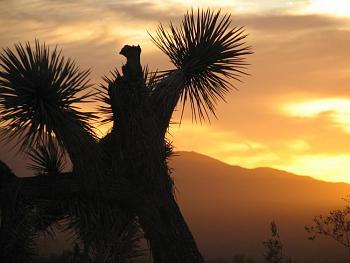 Sunset and sunrise photography-sunset-070.jpg