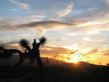 Sunset and sunrise photography-sunset-077.jpg