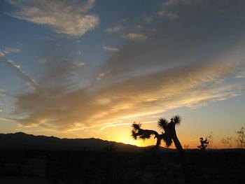 Sunset and sunrise photography-sunset-012.jpg
