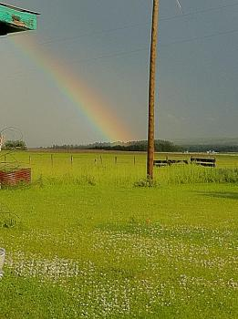 Rainbow Photography-i-phone-pictures-973.jpg