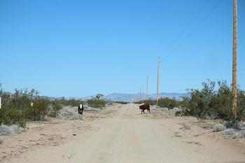 Just shooting down or along the highway as I traveled ... scenery, roadways, etc.!-fetching-water-035-copy.jpg